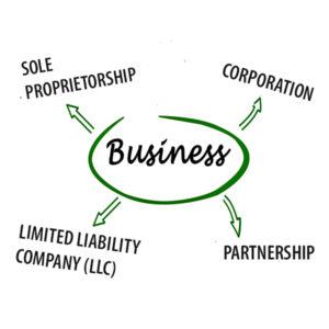 business organizational